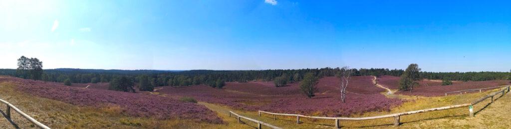 Panoramablick vom Brunsberg