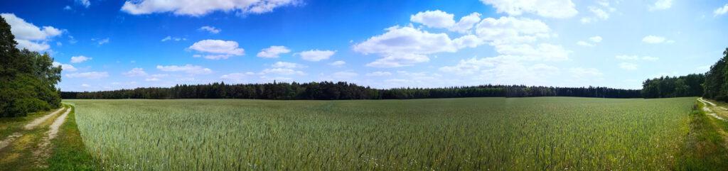 Heidschnuckenweg Panorama über die Felder