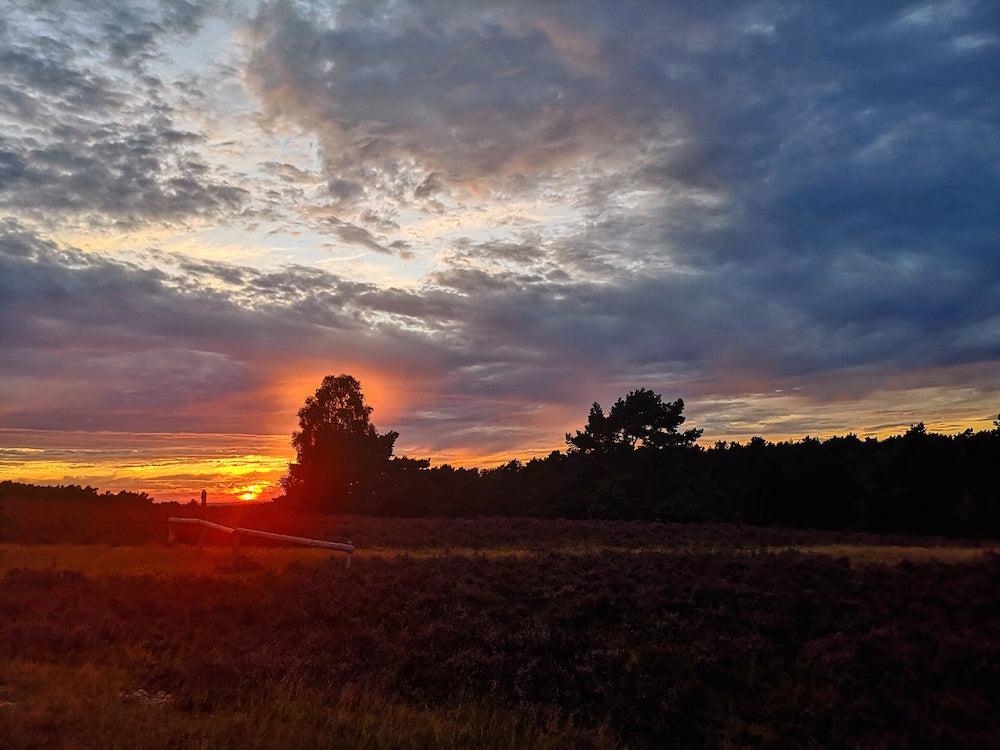 Die letzten Sonnenstrahlen in der Heide