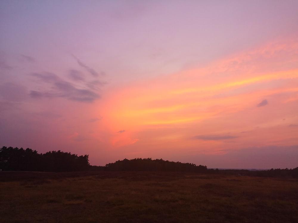 Sonnenuntergang in der Fischbeker Heide