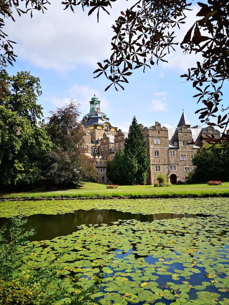 Seerosen im Schlosspark