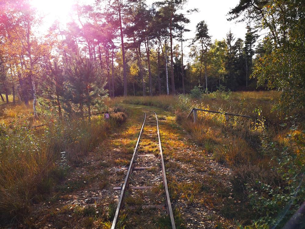 Auf Bahnschienen durch das Moor